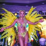 Intense Bermuda Heroes Weekend BHW The Launch, January 14 2018-9553