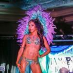 Intense Bermuda Heroes Weekend BHW The Launch, January 14 2018-9735