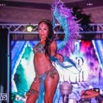 Intense Bermuda Heroes Weekend BHW The Launch, January 14 2018-9744