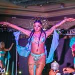 Intense Bermuda Heroes Weekend BHW The Launch, January 14 2018-9816