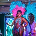 Intense Bermuda Heroes Weekend BHW The Launch, January 14 2018-9846
