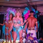 Intense Bermuda Heroes Weekend BHW The Launch, January 14 2018-9850
