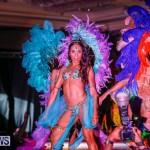 Intense Bermuda Heroes Weekend BHW The Launch, January 14 2018-9901