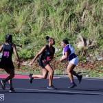 Netball Bermuda Jan 24 2018 (13)