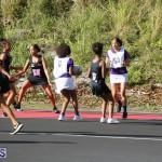 Netball Bermuda Jan 24 2018 (16)