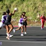 Netball Bermuda Jan 24 2018 (17)