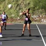 Netball Bermuda Jan 24 2018 (5)