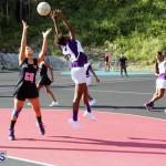 Netball Bermuda Jan 24 2018 (6)