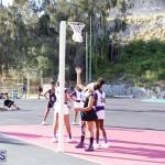 Netball Bermuda Jan 24 2018 (8)