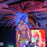 Nova Mas International Bermuda Heroes Weekend BHW The Launch, January 14 2018-0034
