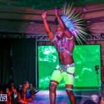 Nova Mas International Bermuda Heroes Weekend BHW The Launch, January 14 2018-0115