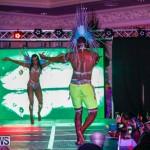 Nova Mas International Bermuda Heroes Weekend BHW The Launch, January 14 2018-0118