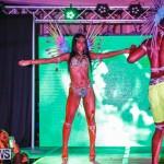 Nova Mas International Bermuda Heroes Weekend BHW The Launch, January 14 2018-0119