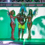Nova Mas International Bermuda Heroes Weekend BHW The Launch, January 14 2018-0158