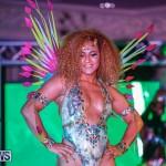 Nova Mas International Bermuda Heroes Weekend BHW The Launch, January 14 2018-0169