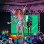 Nova Mas International Bermuda Heroes Weekend BHW The Launch, January 14 2018-0177