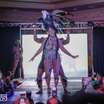 Nova Mas International Bermuda Heroes Weekend BHW The Launch, January 14 2018-0352