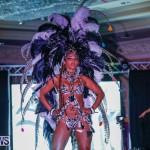 Nova Mas International Bermuda Heroes Weekend BHW The Launch, January 14 2018-0371