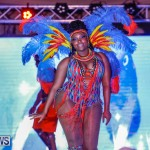 Nova Mas International Bermuda Heroes Weekend BHW The Launch, January 14 2018-0425