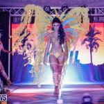 Nova Mas International Bermuda Heroes Weekend BHW The Launch, January 14 2018-0475
