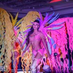 Nova Mas International Bermuda Heroes Weekend BHW The Launch, January 14 2018-0506