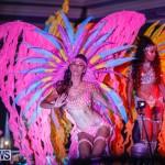 Nova Mas International Bermuda Heroes Weekend BHW The Launch, January 14 2018-0513