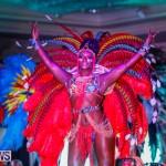 Nova Mas International Bermuda Heroes Weekend BHW The Launch, January 14 2018-0632