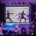 Nova Mas International Bermuda Heroes Weekend BHW The Launch, January 14 2018-9983
