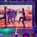 Nova Mas International Bermuda Heroes Weekend BHW The Launch, January 14 2018-9988