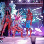 Party People Bermuda Heroes Weekend BHW The Launch, January 14 2018-8865
