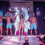 Party People Bermuda Heroes Weekend BHW The Launch, January 14 2018-8887