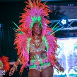 Party People Bermuda Heroes Weekend BHW The Launch, January 14 2018-8978