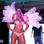 Passion Bermuda Heroes Weekend BHW The Launch, January 14 2018-0669