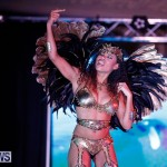 Passion Bermuda Heroes Weekend BHW The Launch, January 14 2018-0867
