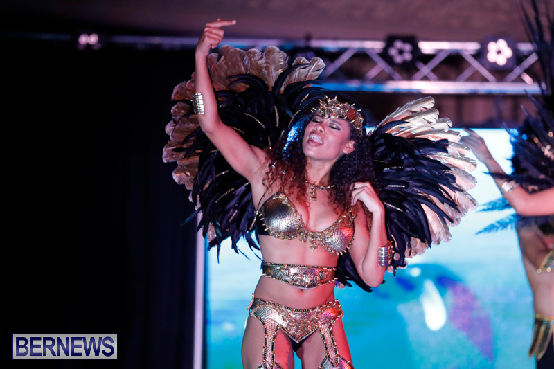 Passion-Bermuda-Heroes-Weekend-BHW-The-Launch-January-14-2018-0867