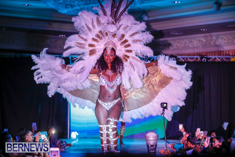 Passion-Bermuda-Heroes-Weekend-BHW-The-Launch-January-14-2018-1082-2