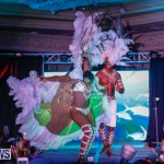 Passion Bermuda Heroes Weekend BHW The Launch, January 14 2018-1092-2