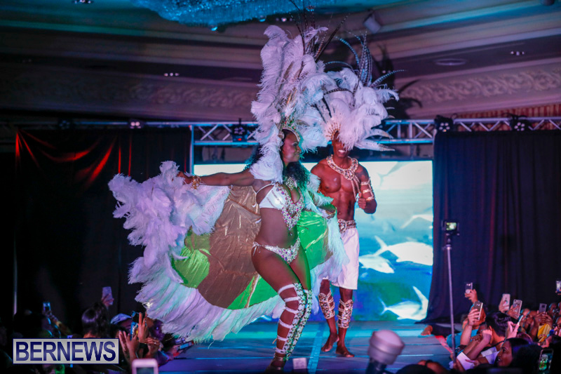 Passion-Bermuda-Heroes-Weekend-BHW-The-Launch-January-14-2018-1092-2