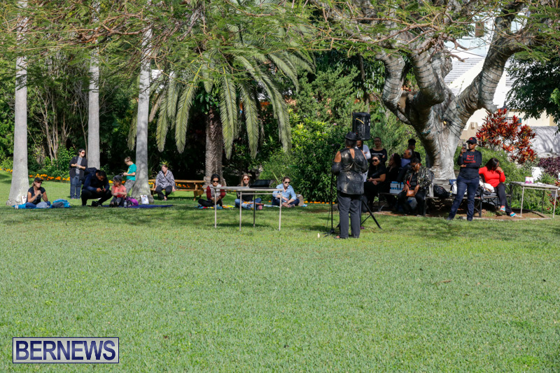 Womens March At Queen Elizabeth Park Bermuda, January 20 2018-2999