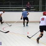 ball hockey Bermuda Jan 31 2018 (1)