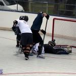 ball hockey Bermuda Jan 31 2018 (10)