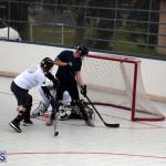 ball hockey Bermuda Jan 31 2018 (8)