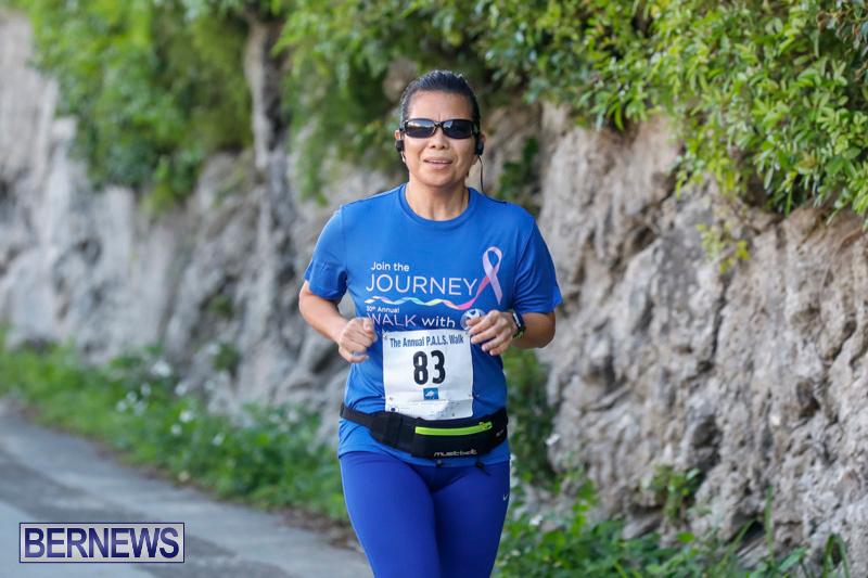 30th-Annual-PALS-Fun-Run-Walk-Bermuda-February-18-2018-9617