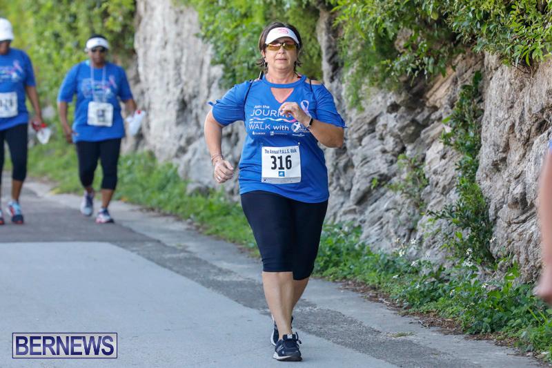 30th-Annual-PALS-Fun-Run-Walk-Bermuda-February-18-2018-9689