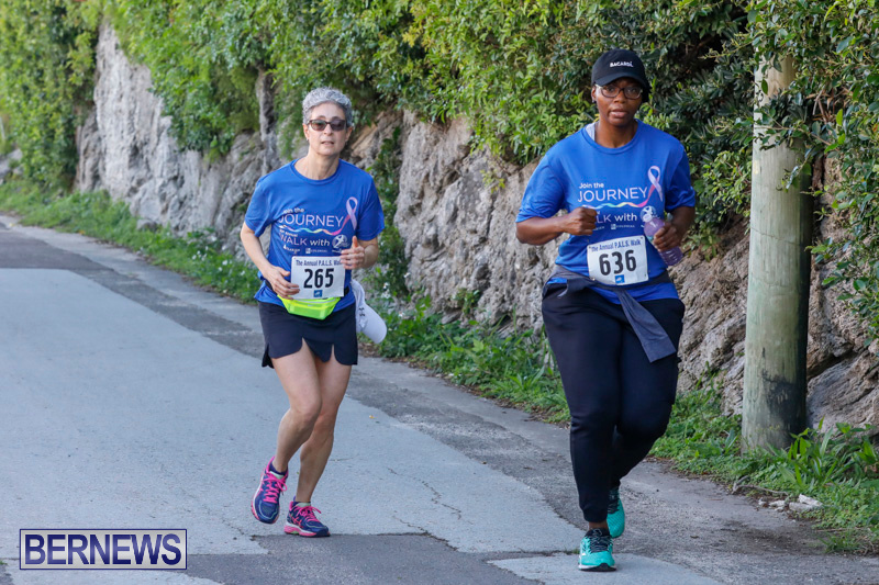 30th-Annual-PALS-Fun-Run-Walk-Bermuda-February-18-2018-9719