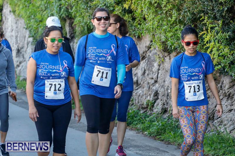 30th-Annual-PALS-Fun-Run-Walk-Bermuda-February-18-2018-9729