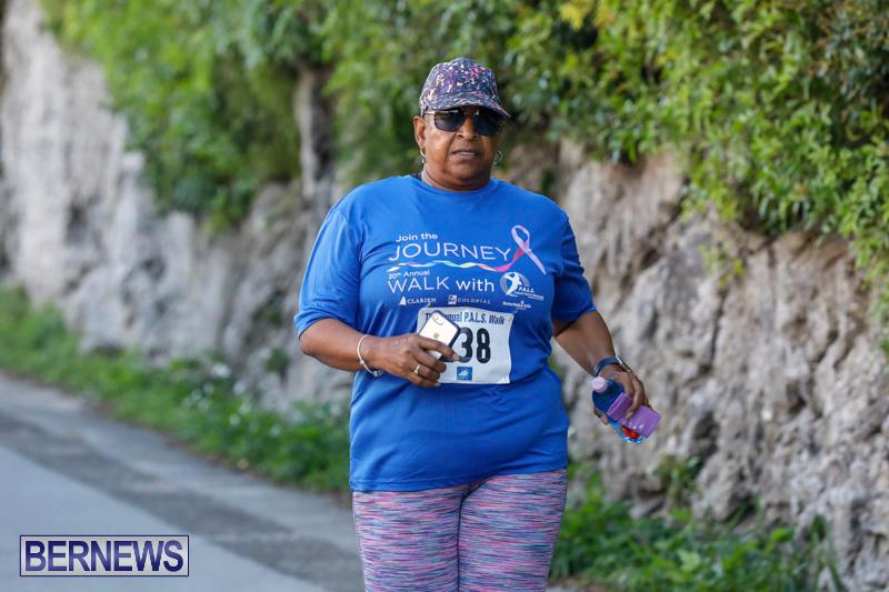 30th-Annual-PALS-Fun-Run-Walk-Bermuda-February-18-2018-9768