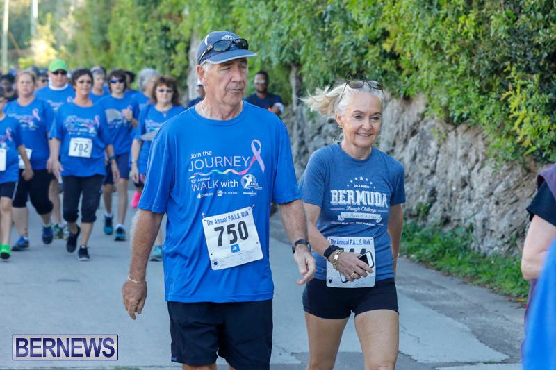 30th-Annual-PALS-Fun-Run-Walk-Bermuda-February-18-2018-9835