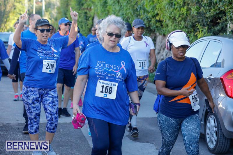 30th-Annual-PALS-Fun-Run-Walk-Bermuda-February-18-2018-9850