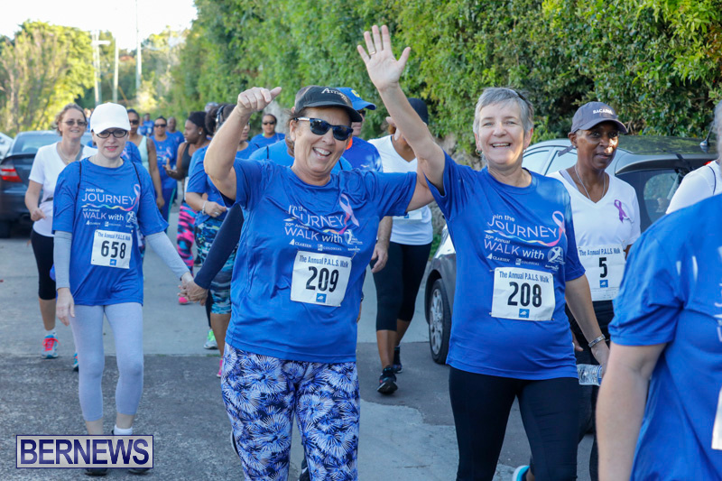 30th-Annual-PALS-Fun-Run-Walk-Bermuda-February-18-2018-9853